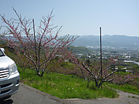 20120428_06