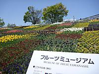 20120428_08