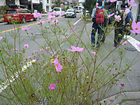 20120930_13