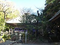 20121110_08