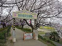 20130324_1