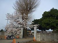 20130329_1