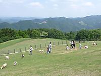 20130602_06
