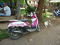 Thai_023