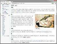 Wiki_takoama